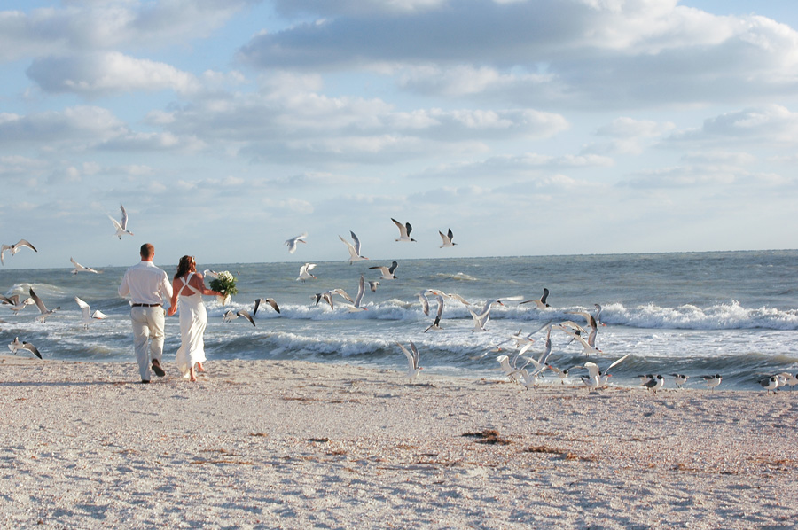 Bride and Groom at Sand Key